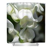 White Creamy Peaceful Shower Curtain