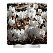 White Cyclamen Shower Curtain