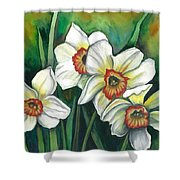 White Daffodils Shower Curtain