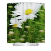 White Daisy Digital Oil Painting Shower Curtain