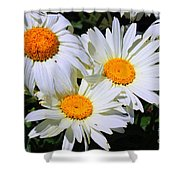 White Daisy Flowers Shower Curtain