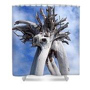 White Desert Tree Shower Curtain