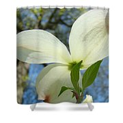 White Dogwood Flower Art Prints Blue Sky Baslee Troutman Shower Curtain