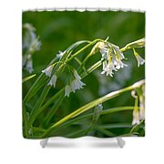 White Drooping Flower Shower Curtain
