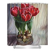 White-edged Red Tulips Shower Curtain