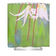 White Fawn Lilies In The Rain Shower Curtain