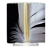 White Feather Shower Curtain