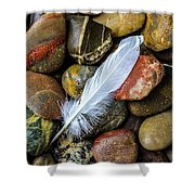 White Feather On River Stones Shower Curtain