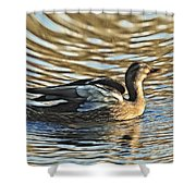 White Feathers Abstract   Shower Curtain