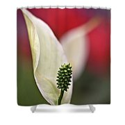 White Flamingo Flower Shower Curtain
