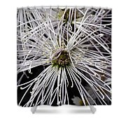 White Flora Shower Curtain