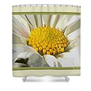White Flower Abstract With Border Shower Curtain