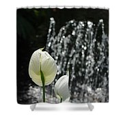 White Flower At Fountain Shower Curtain