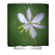White Flower Shower Curtain by Lynn Geoffroy