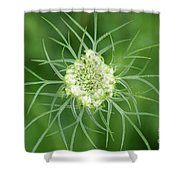 White Flower Spidery Leaves Shower Curtain