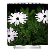 White Flowers In The Garden Shower Curtain
