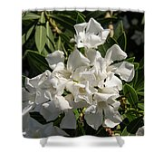 White Flowers On Green Leaves Shower Curtain