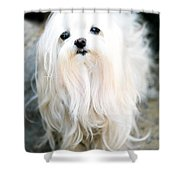 White Fluff Shower Curtain