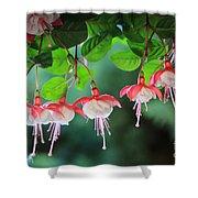 White Fuchsia Shower Curtain