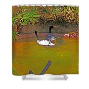 White, Geese, On, Pond Shower Curtain