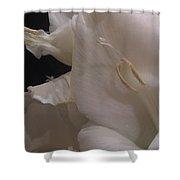 White Gladiolus Flower Shower Curtain