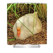 White Goose By Pond Shower Curtain