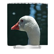 White Goose Sculpted By The Light Shower Curtain