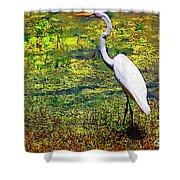White Heron 1 Shower Curtain