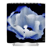 White Hibiscus On Black Background Shower Curtain
