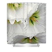 White Hollyhocks Shower Curtain