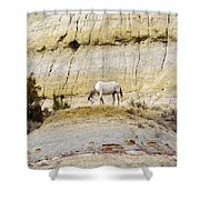 White Horse On A Mound Shower Curtain