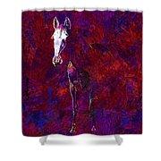 White Horse White Horse  Shower Curtain