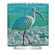 White Ibis Paradise Shower Curtain