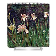 White Irises Shower Curtain