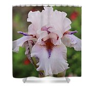 White Iris Shower Curtain