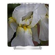 White Iris Shower Curtain