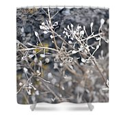 White Irish Flower Shower Curtain