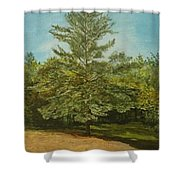 White Lake Shower Curtain by Leah  Tomaino