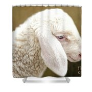 White Lashes Shower Curtain
