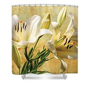 White Lilies On Amber Shower Curtain
