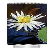 White Lily On Pond Shower Curtain