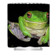 White-lipped Tree Frog Shower Curtain