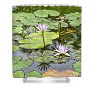 White Lotus Flowers Shower Curtain