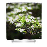 White Love 6 Shower Curtain