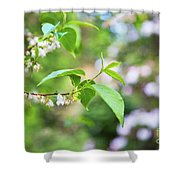 White Love 8 Shower Curtain
