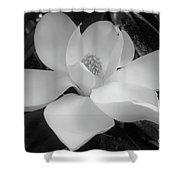 White - Magnolia - Beauty Shower Curtain
