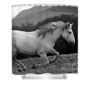 White Mare Gallops #1 -  Close Up Black And White Shower Curtain