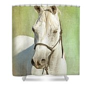 White Mare Shower Curtain