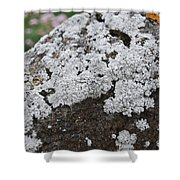 White Moss Shower Curtain
