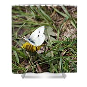 White Moth Shower Curtain